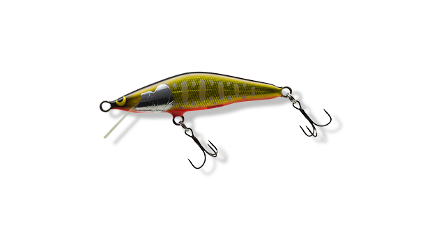 A-PKO: パーマーク金黒 オレンジベリー