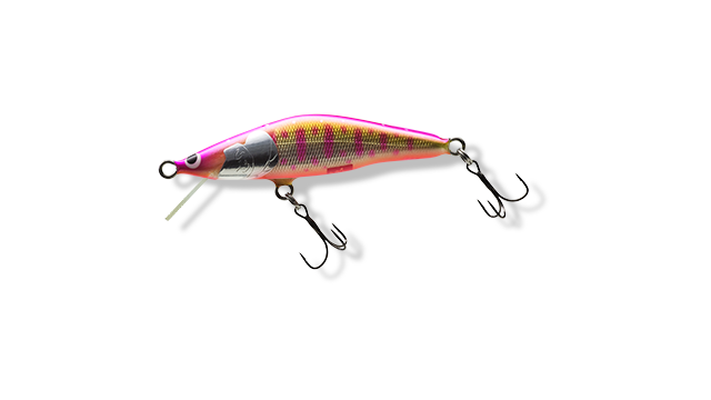 A-PYM : ピンクヤマメ